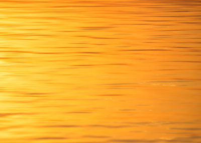 liquid gold - golden - water - gold - liquid - jesolo - golden hour - creative nature