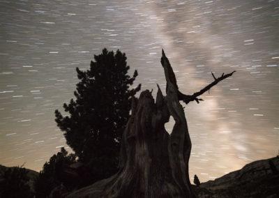 nightsky, sennes, dolomites, miklyway, love, heart, tree, night
