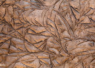Frozen - Dirt - Beautiful - Nature - Naturephotography