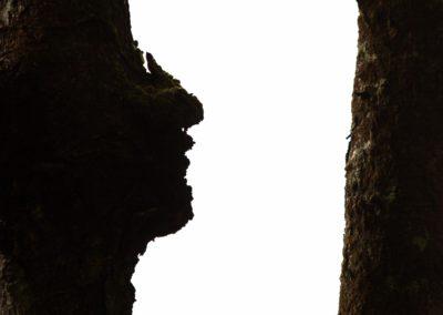 Grown face / Tofino (BC) / Daniel Tschurtschenthaler