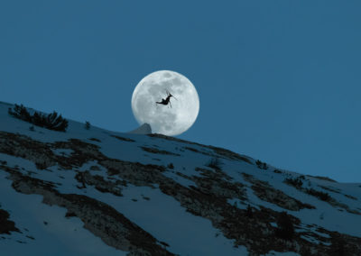 INTO THE MOON / Dolomites (IT) / Daniel Tschurtschnethaler