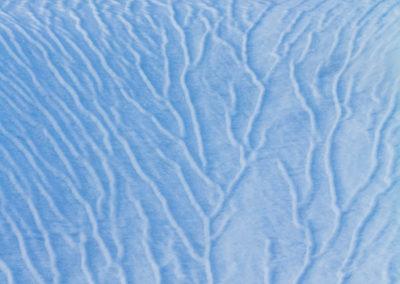 Snow veins / Daniel Tschurtschenthaler