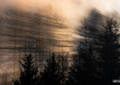 Shaddow and light / Daniel Tschurtschenthaler
